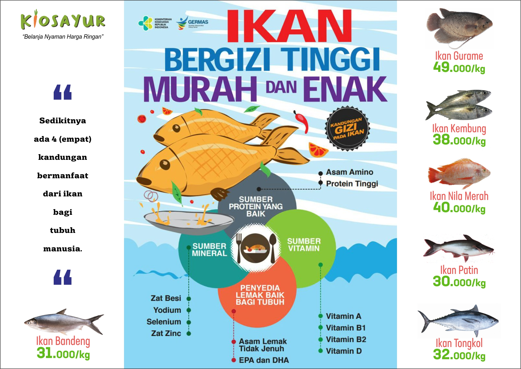 Ikan bergizi tinggi murah dan enak